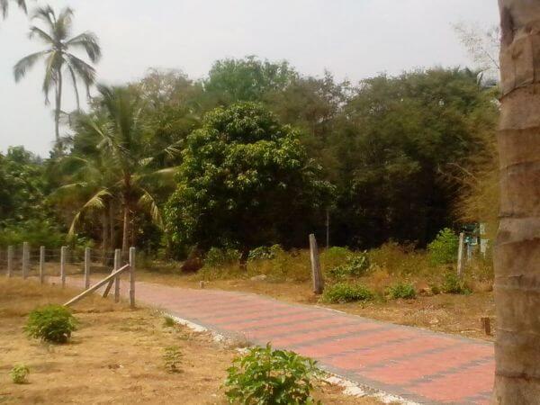 Residential Plots for sale at Kottayi, palakkad, kerala