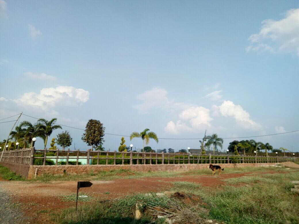 Residential plot for sale at Raipur in prime location layout pass approved