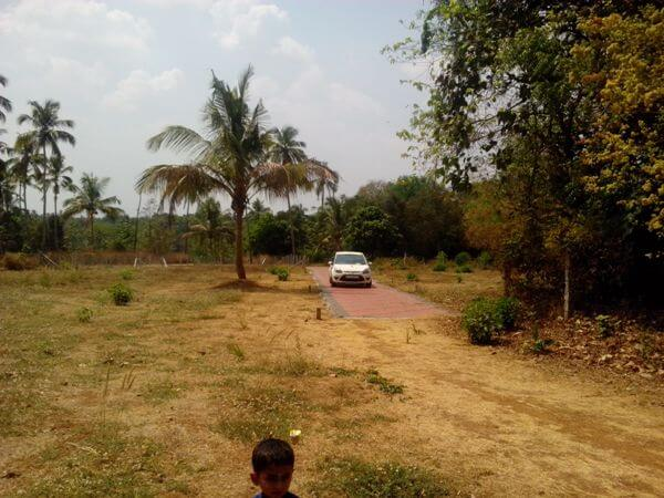 Residential Plots for sale at Kottayi, palakkad, kerala